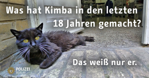 Kimba Internet WP
