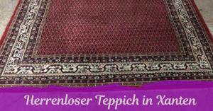 Teppich WP