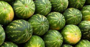 watermelon-2636_1280