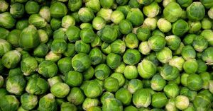 brussels-sprouts-22009_1920