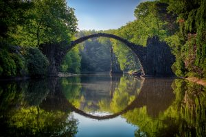 gray-bridge-and-trees-814499