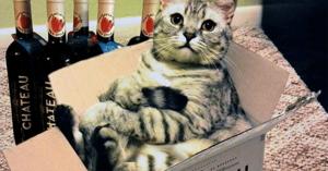header_wijn