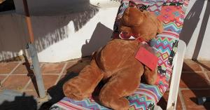 transavia beer uitgelicht