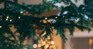 kerst lidl