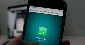 header whatsapp