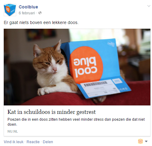 doos_kat